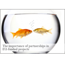The importance of partnerships in EU-funded projects