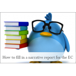 How to fill in a narrative report for the EC