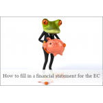 How to fill in a financial statement for the EC